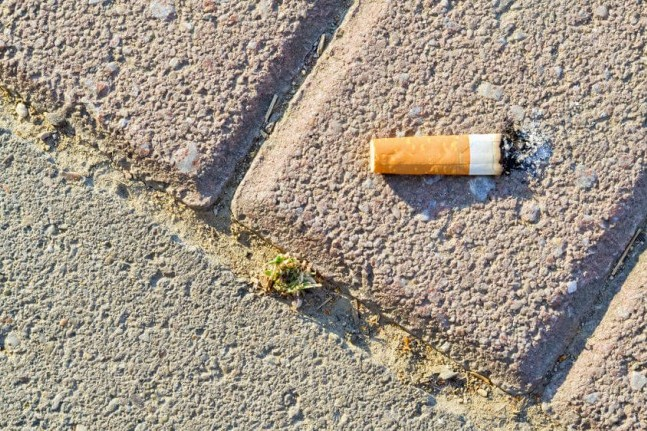 cigarette butt on pavement