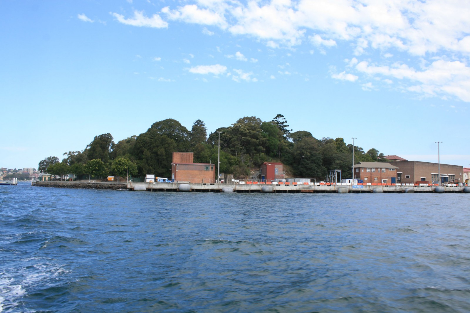 The northern headland of Garden Island viewed from the harbour, with many significant trees now defining its character