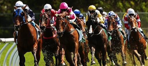 Sydney-races