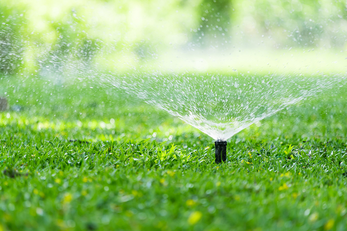 Automatic garden lawn sprinkler action watering grass