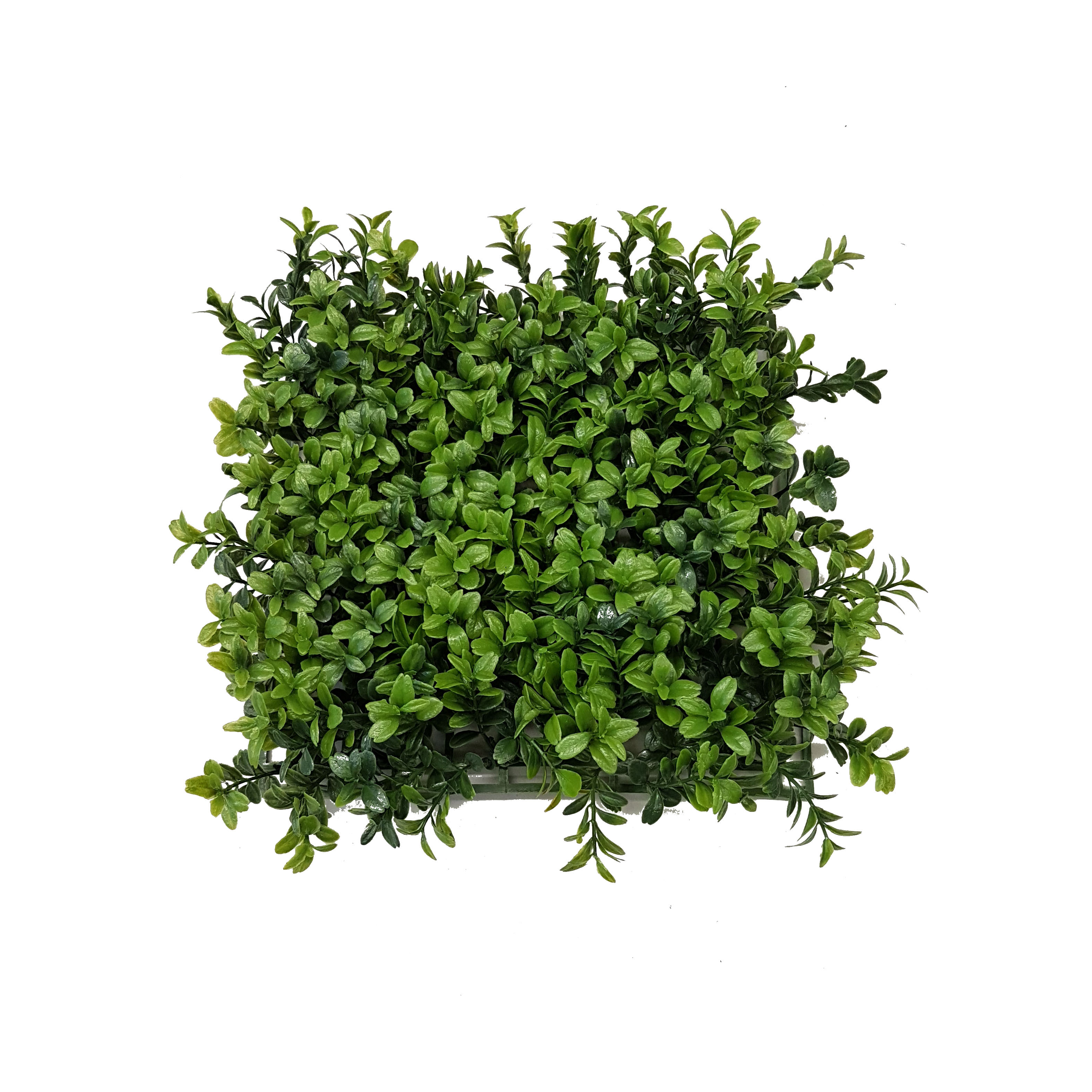 Premium Deluxe Boxwood Mat 25cm X 25cm Uv Stabilised
