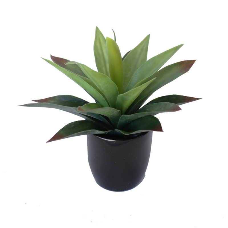 Agave plant green red potted 25cm complete with fibreglass pot artificial plants online - Flowers planted may complete garden ...