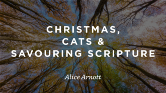 Christmas, Cats and Savouring Scripture