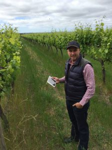 Oli Madgett from Platfarm stands in grape vines holding a tablet