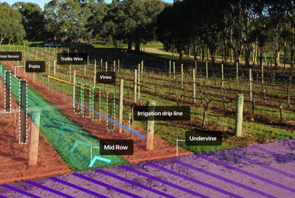 An image of a vine row with highlighted sections to show the component parts of headland, irrigation submain, soil moisture sensor, posts, trellis wire, vines, irrigation drip line, midrow and undervine