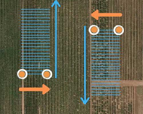 rows horizontal
