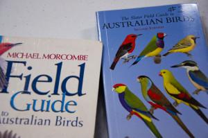 Habitat for Bush Birds - Birdwatching for Beginners