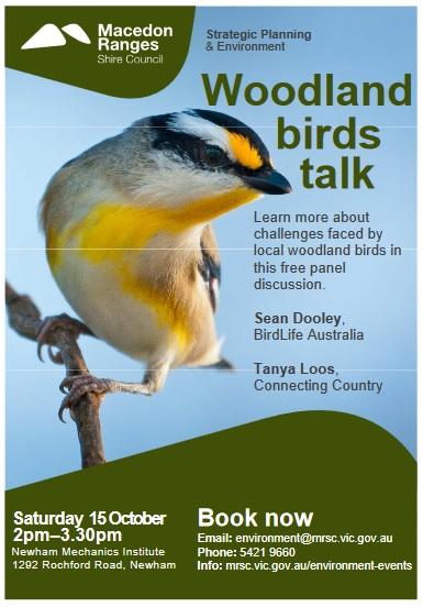 woodland-birds-talk