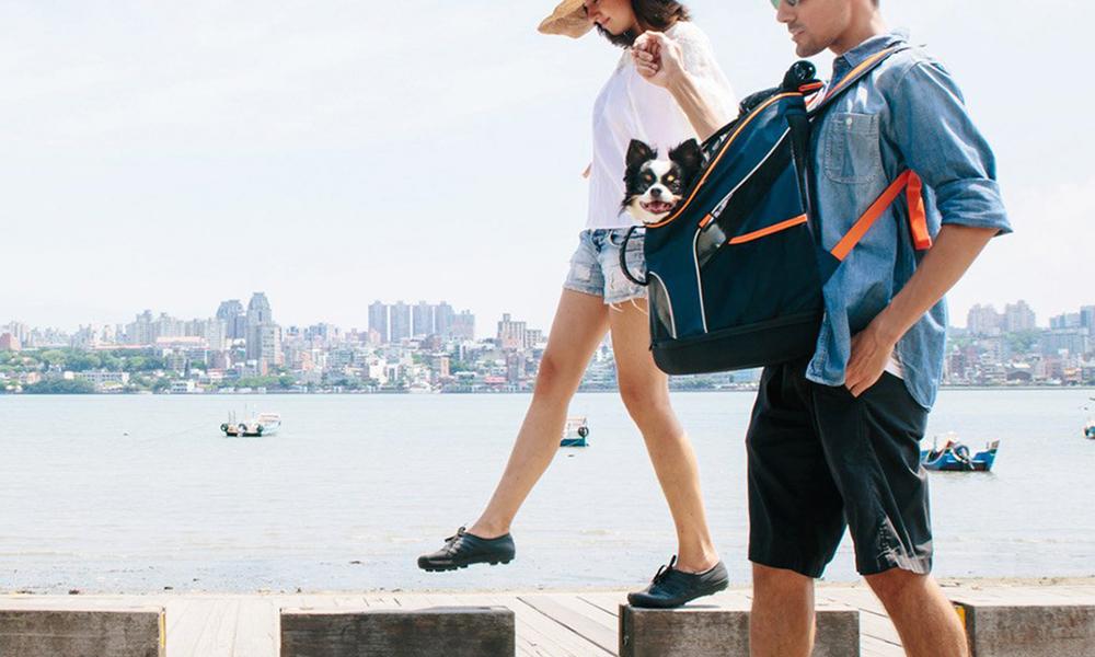 Ibiyaya ultralight backpack pet carrier 2918   web5