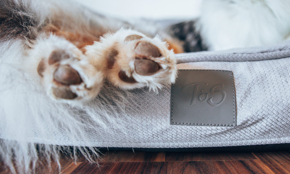 Portsea grey plush dog bed 2971   web3