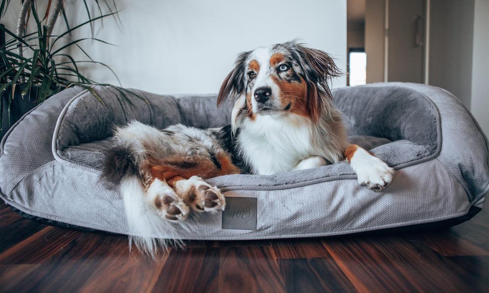 Portsea grey plush dog bed 2971   web2