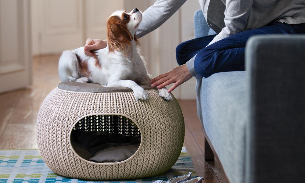Curver cozy pet bed 2987   web1