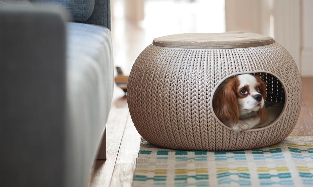Curver cozy pet bed 2987   web3
