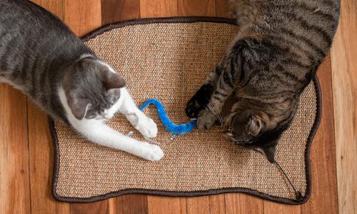 Modern pets cat scratching sisal mat 2927   web3