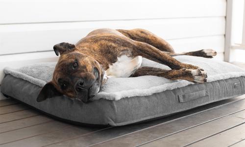 Modern pets orthopedic luxury dog mattress 2931   web1
