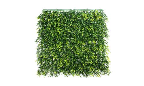 Boxwood hedge panel 1