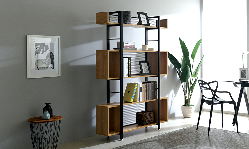 Paxton bookshelf 2