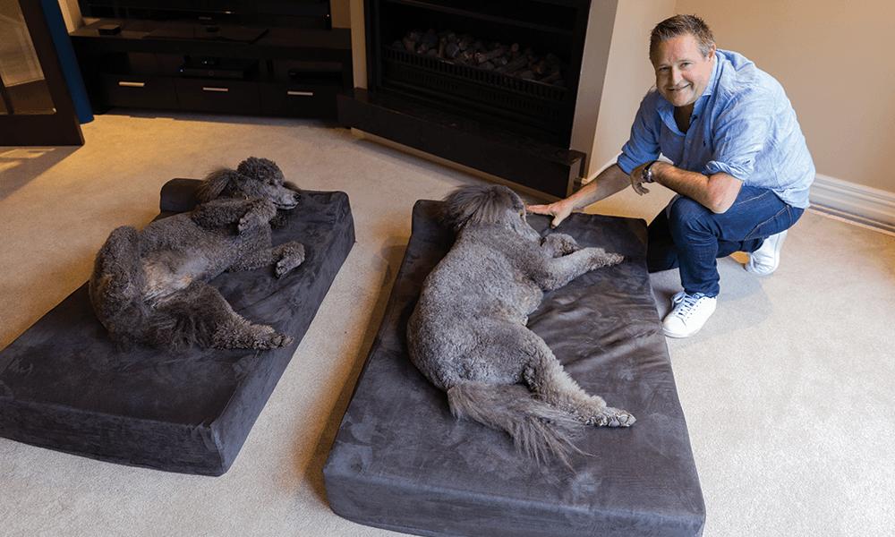 Supreme dog bed 2
