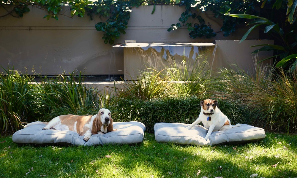 Dog bed grass lrg
