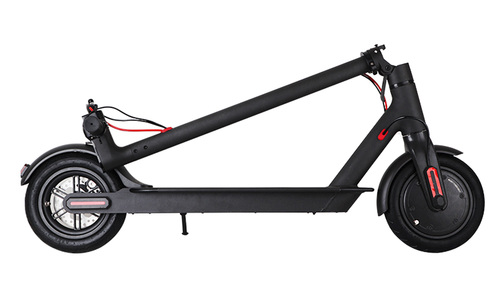 Folding electric scooter   web1