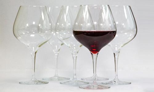 Burgundy   schott zwiesel web1