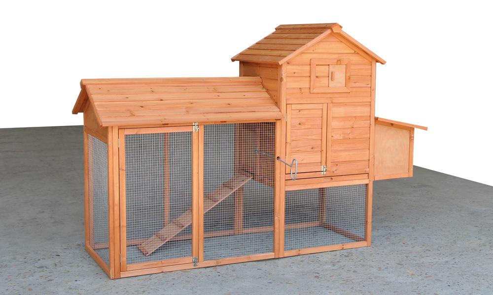 Chicken coop   web1
