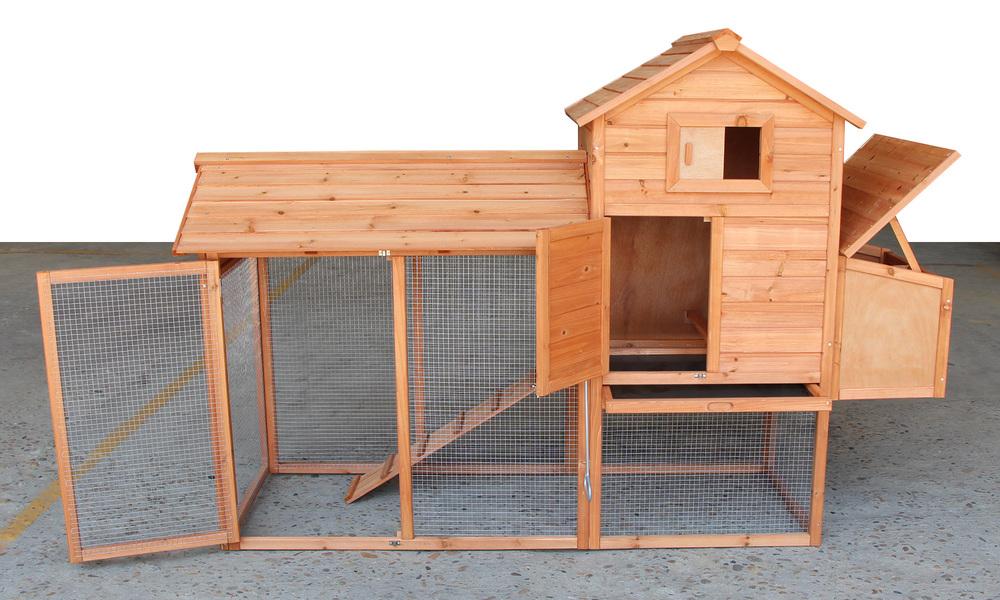 Chicken coop   web6