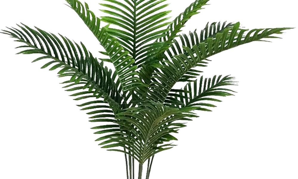 Artificial majesty palm   web3