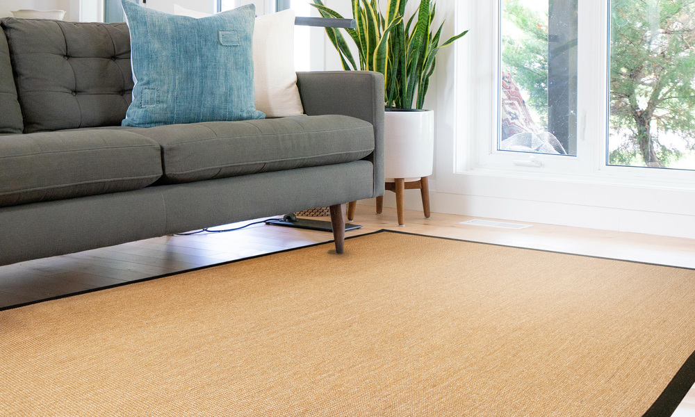 Sisal rug with border   web1 %282%29