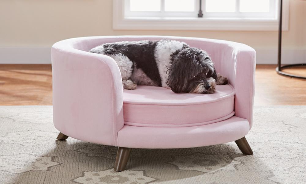 Bella dog sofa   web1