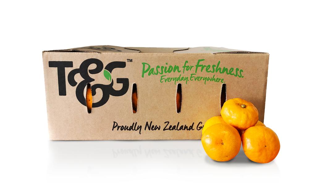 2227 tg satsuma mandarin  5kg   web