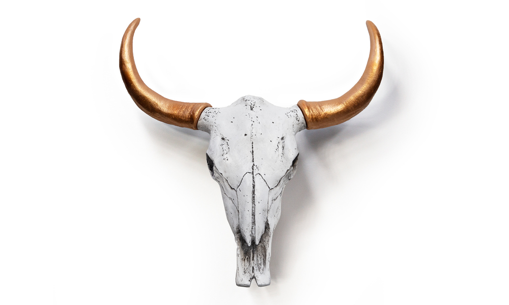 Copper faux cow skulls   web
