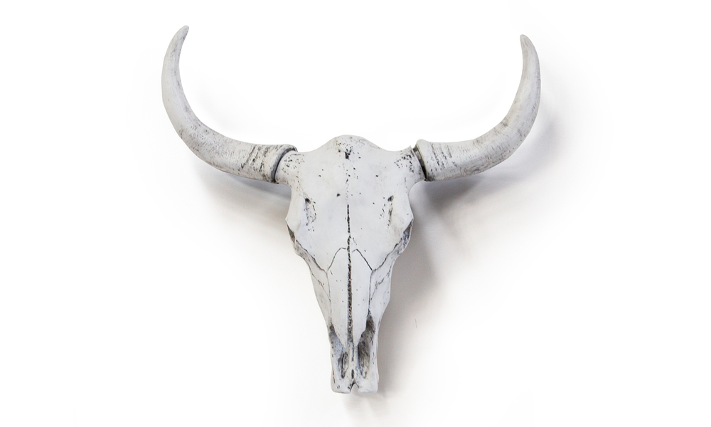 White faux cow skulls   web