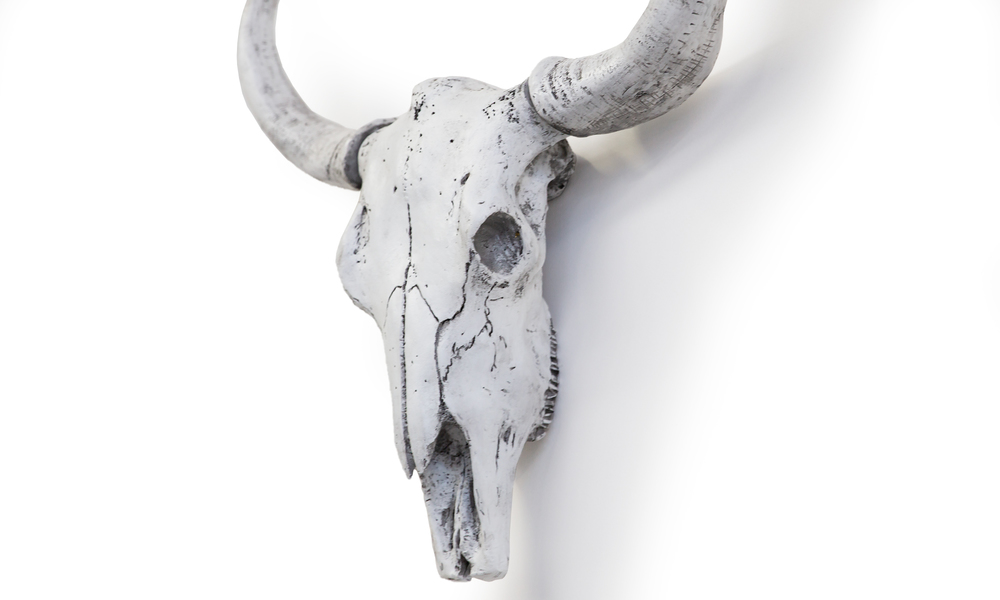 White faux cow skulls   web2