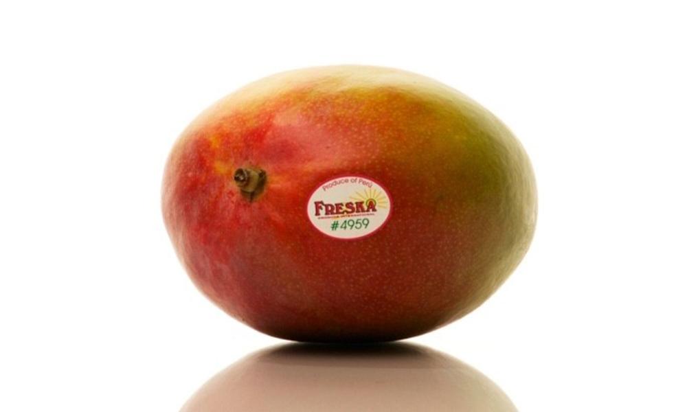 Tray of 12 mangos 2349   web2