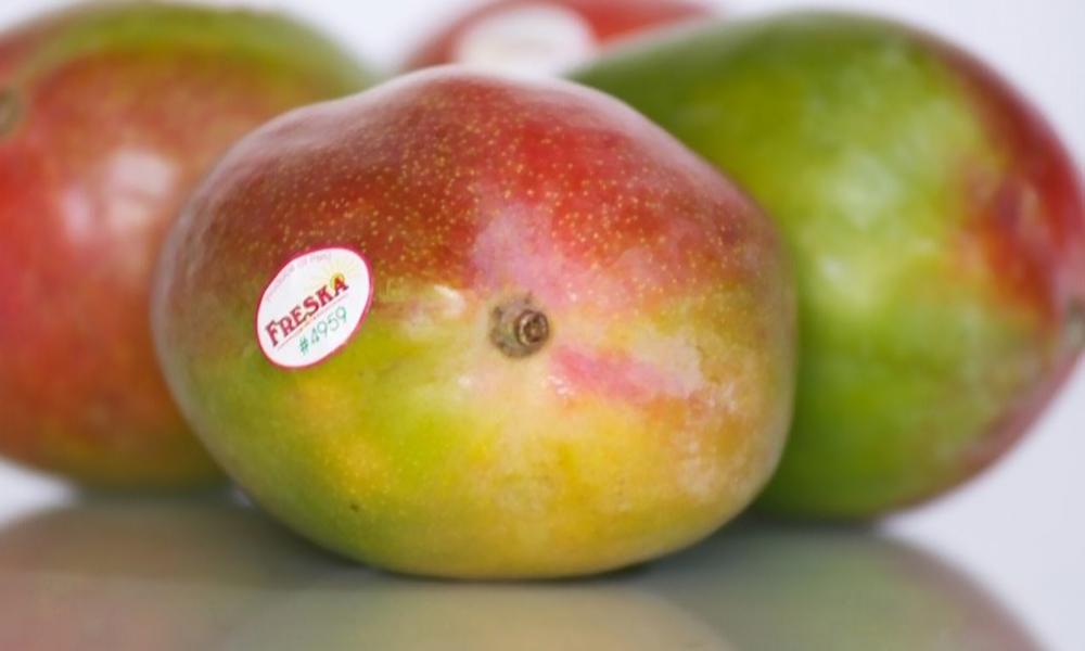 Tray of 12 mangos 2349   web3