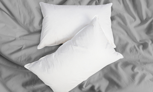Duck down   feather pillow two pack 2327   web1