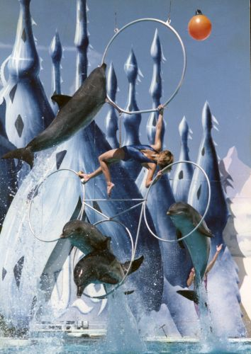 Diane Dickerson performing the quadruple trapeze hoop jump at Atlantis Marine Park in 1985. Picture courtesy Wanneroo Regional Museum