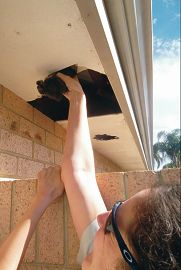 A kitten is pulled from a roof at a Belmont home by RSPCA Senior Inspector Amanda Swift.