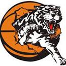 Willetton-Tigers