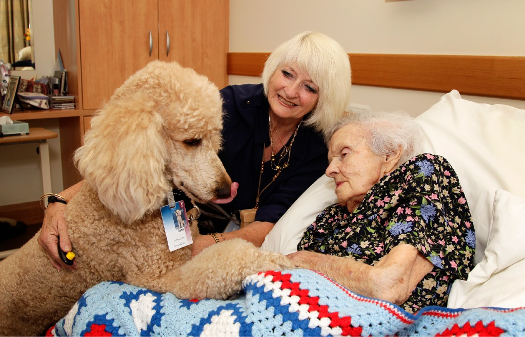 Jake with his owner Ann Jacobs visit 100-year-old Kingia Care resident Mavis Cleaver. |Picture: Marie Nirme        www.communitypix.com.au   d452032