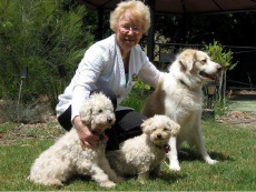 Local volunteer Sheila Twine helps the elderly to take care of their pets, such as Lady and her friends.