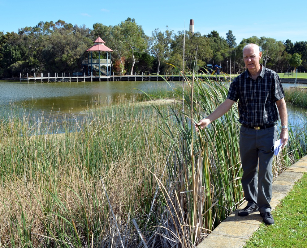 Down to the waterline: Friends of Maylands Lakes chairman Geoff Trott.