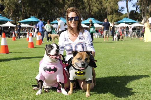 City of Joondalup hosts  Dogs Day Out