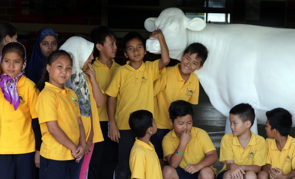 Koondoola Primary School year 5 and 6 students with their cow.Picture: Martin Kennealey        www.communitypix.com.au d451865
