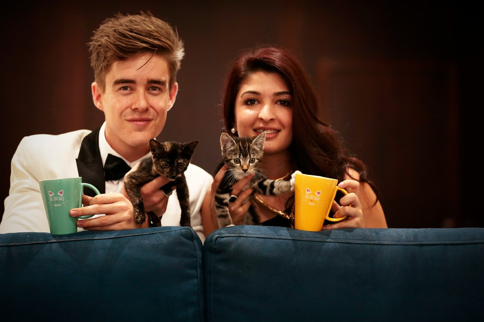 Cat Cafe, Cat Haven in joint venture for feline welfare this weekend in Subiaco