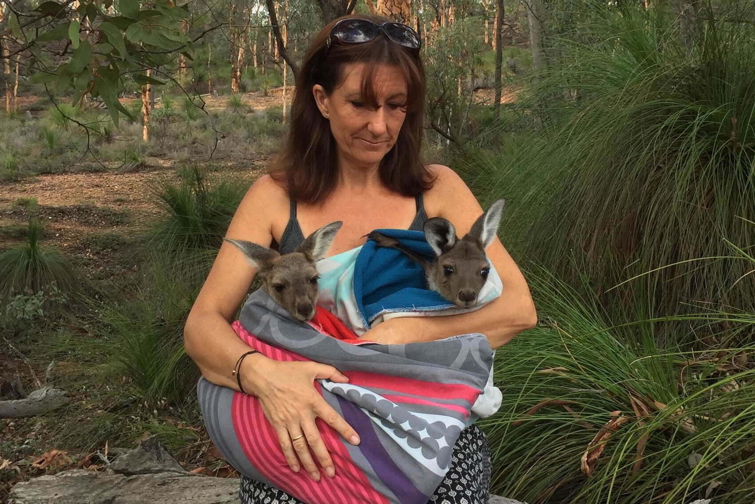 Northern Valleys Wildlife Support carer Sonia Cooke with joeys Freedom and Fugee, rescued from Yanchep.