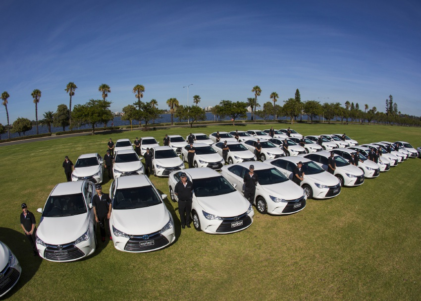 The Perth Shofer fleet at today's media launch. Picture: Matt Jelonek