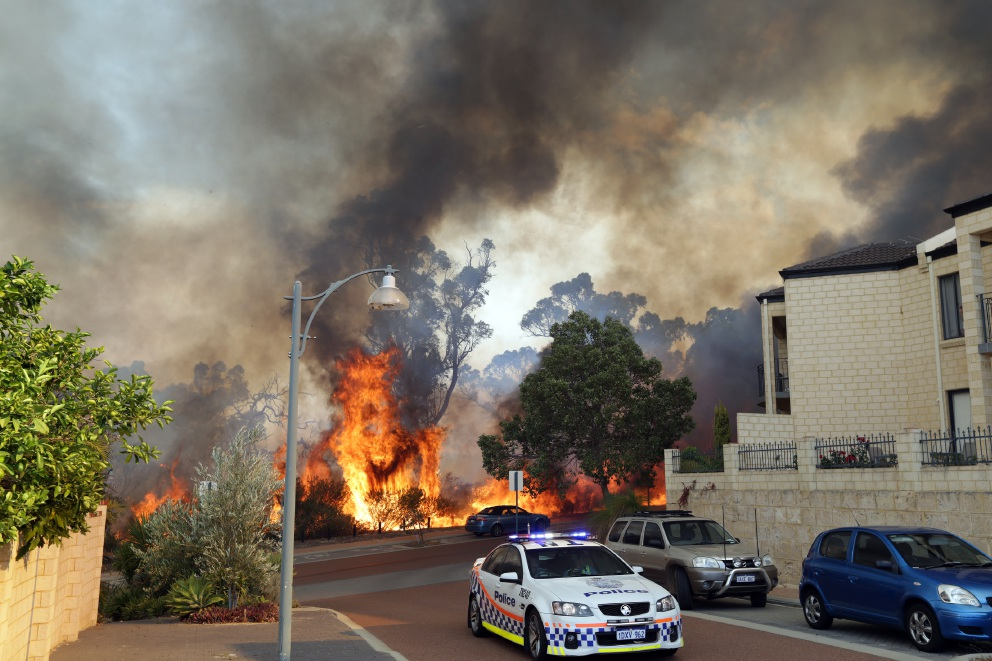 Joondalup fire: dried leaves fueled blaze