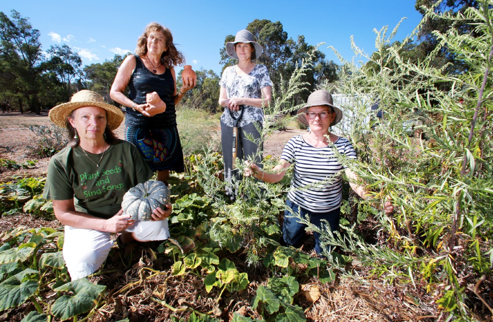 Jenny Currell, Vera Ross, Sarah Barley and Sonia Smart of Glen Forrest Community Garden. They have been targeted by thieves twice in recent months. Picture: David Baylis        www.communitypix.com.au   d451353